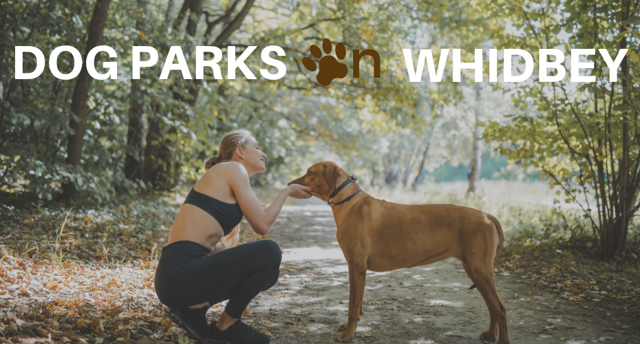 Dog Parks on whidbey, Whidbey island, Pets, Dogs, Windermere Real Estate, Heidi VonGrey