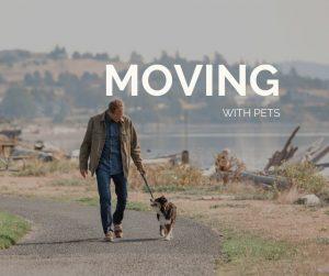 Moving with Pets, Windermere Real estate, Whidbey Island, Heidi VonGrey